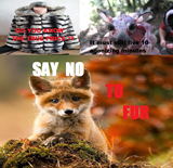 no to fur