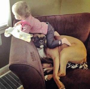 babysitter 11